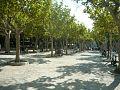 Náměstí v St.Tropez.jpg