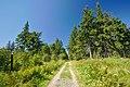 Národní přírodní rezervace Bukačka, okres Rychnov nad Kněžnou (06).jpg