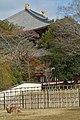 Nara, Todai-ji 20140201.JPG