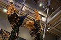 National Museum of Scotland (16778681302).jpg
