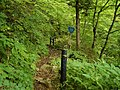National highway designated section of mountain trail National Route 289 of Japan Old Kashi-Pass.jpg