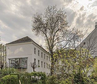 Naturdenkmal 656, Esche, Wieden.jpg