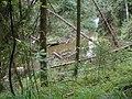 Nature Reserve Lemmenlaakso - River Keravanjoki - panoramio - Arto J.jpg