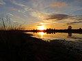 Naturschutzgebiet Ewiges Meer Tannenhausen Aurich.jpg