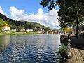 Neckar mit Alter Brücke Heidelberg IMG 0220.jpg