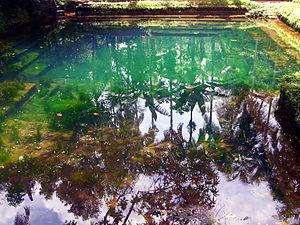 Punnakkulangara - Neeliyar Kottam Pond