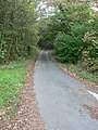 Nefod Lane - geograph.org.uk - 592203.jpg
