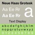 Neue Haas Grotesk.pdf