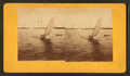 Newport sailboat, by Joshua Appleby Williams.png