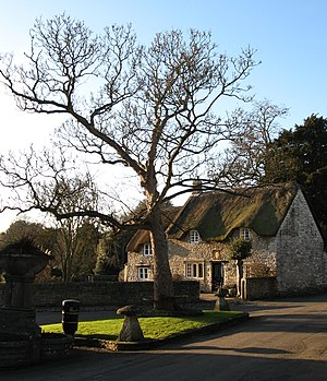 Newton St Loe - A thatched cottage in the village