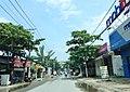 Nguyen duy trinh, Binh Trung Tay, q2, tphcmvn - panoramio.jpg