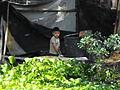 Niño en Xochimilco.JPG