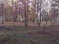 Nizhny Tagil, Sverdlovsk Oblast, Russia - panoramio (20).jpg