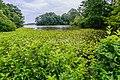 Norfolk Botanical Garden Lake NBG LR.jpg