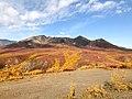 North Fork Mountain (48680931281).jpg