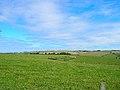 North Heath Barn - geograph.org.uk - 54936.jpg