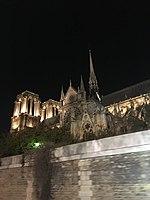 Notre Dame de Paris - Vue de la seine 02.jpg