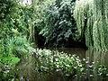 Nuthe-Potsdam-21-VI-2007-07.jpg