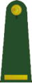 OF-D Asteğmen.png