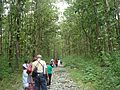 ON THE WAY TO BUXA FORT.jpg