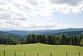 Oberes Wildbachtal vom Reinischkogel.jpg