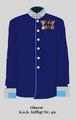 Oberst im k.u.k. InfRgt 49.png