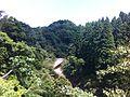 Okugame track.jpg
