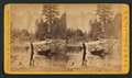 On the Merced River, Cathedral Rocks in the distance, by E. & H.T. Anthony (Firm) 2.png