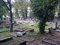 OpoleCmentarzZydowski7.jpg