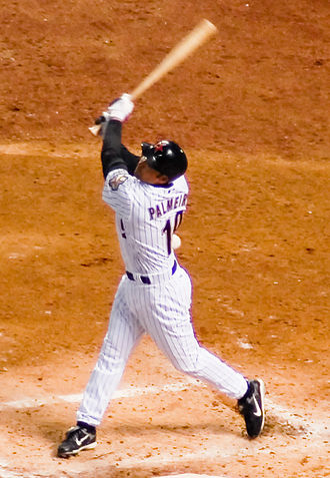 Houston Astros - Astros' outfielder Orlando Palmeiro, 2007