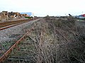 Overgrown sidings, Newhaven - geograph.org.uk - 123547.jpg