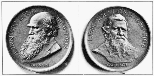 Two sides of the Darwin-Wallace medal of the Linnaean Society, depicting both Charles Darwin and Alfred Wallace (click to embiggen)