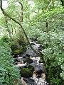 Padley Gorge - geograph.org.uk - 945521.jpg