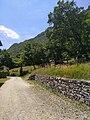 Paesaggio al interno del Parco del Monte Barro.jpg
