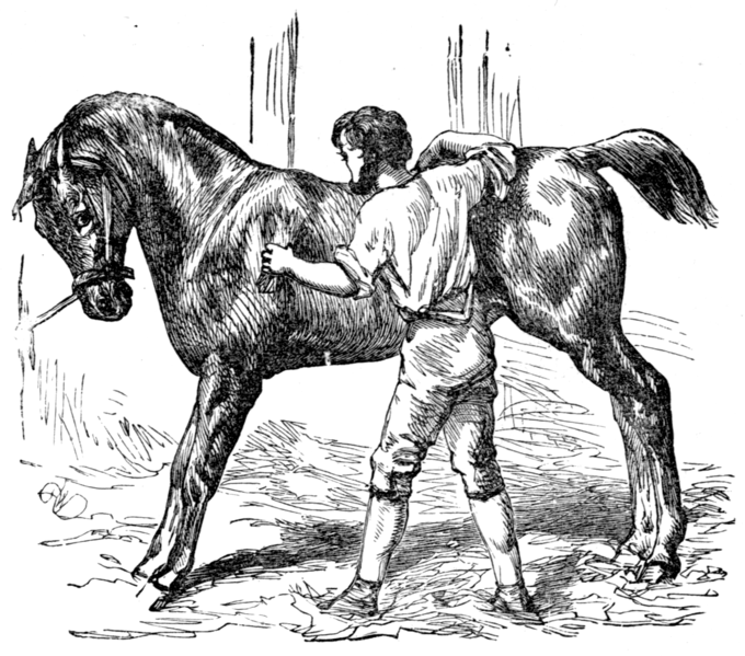 File:Page 55 illustration to Three hundred Aesop's fables (Townsend).png