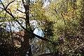 Palisades West Trail - Chattahoochee River November 2018 2.jpg