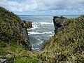 Pancake Rocks, West Coast Region, New Zealand (3).JPG
