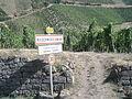 Panneau Niedermorschwihr, Alsace.JPG