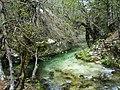 Parco Nazionale d'Abruzzo, Lazio e Molise - panoramio (7).jpg