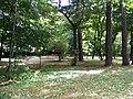 Park in Klimkówka bk05.JPG