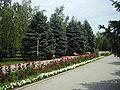 Park in Timashevsk.JPG