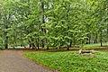 Park w zespole pałacowym Potockich, Krzeszowice, A-423 M 01.jpg