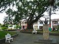 Parque El Mariscal (2). Cartago, Valle del Cauca, Colombia.JPG