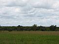 Parque nacional Aguaro-Guariquito 040.jpg