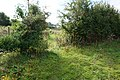 Path leading to Black House Farm, Long Lane (geograph 5099912).jpg