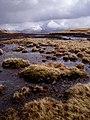 Peat bog between Beinn Odhar and Meall Buidhe - geograph.org.uk - 158415.jpg
