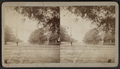 Penn. Ave., Atlantic City, N.J, from Robert N. Dennis collection of stereoscopic views.png