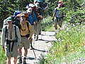 People hiking up Dead Horse Creek trail through flower meadow (asters). (f1fb3232d0a540408001bc437098a9c3).JPG