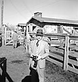 Photographer, Stockyards, Texas and Pacific Railway Company (16302759122).jpg