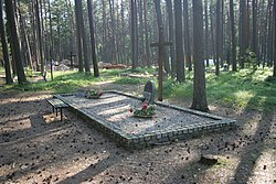 Piaśnica Forest - Mass grave 01.jpg